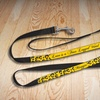 Customized Dog Leashes (Up to 67% Off)