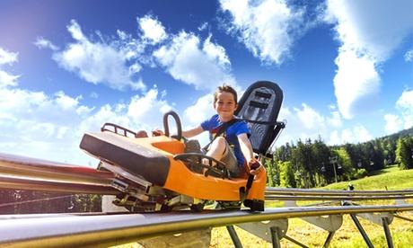 6 Fahrten für Zwei, Vier oder Sechs auf der Rodelbahn Oberoderwitz ab 14,90 € (bis zu 52% sparen*)