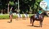 Escola de Equitação da Hípica - Brasília: #BlackFriday - Equitação na Escola de Equitação da Hípica – Setor Hípico de Brasília - digite BLACK17 e ganhe desconto