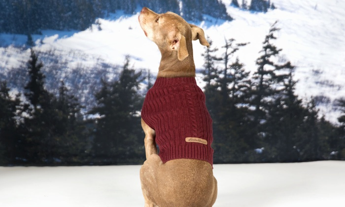 Eddie Bauer Dogs Cable Sweater Groupon