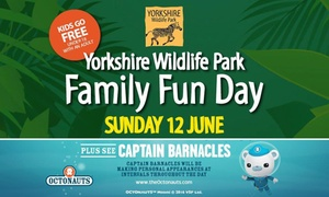 Doncaster Racecourse: Entry For Two Adults and Up to Six Children to Family Fun Day at Doncaster Racecourse, Sunday 12 June (50% Off)