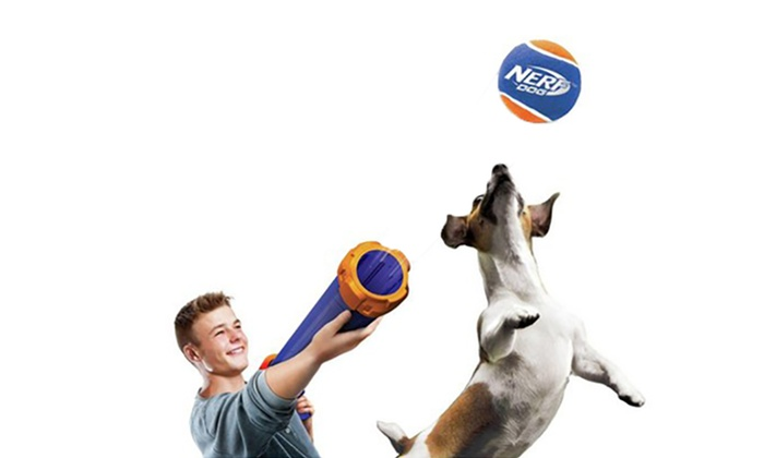 Look at This: $39.95 for a Nerf Dog Tennis Ball Blaster Gun (Don' ...