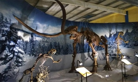 Entrada para 2, 3 o 4 personas desde 12,95 € en Dinopétrea