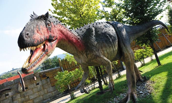 Bilety do Parku Rozrywki Dinolandia