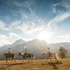 Up to 37% Off Horseback Trail Rides at Boundary Ranch