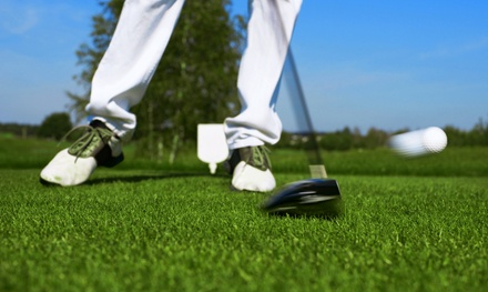 Golf-Club Fitting Analysis for a Single Club, Type of Clubs, or a Full Set at DD Custom Golf (Up to 71% Off)