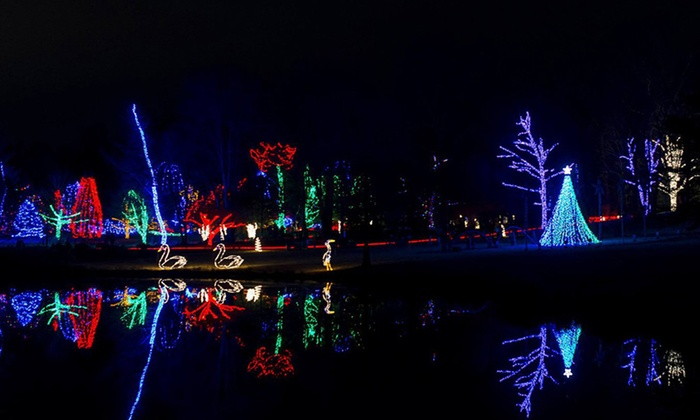 Light Show Admission - Winter Walk of