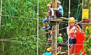 Port Brzeźno – Rodzinny Park Rozrywki: Przejście trasy parku linowego oraz skok adrenaliny od 30,99 zł w Parku Linowym Port Brzeźno w Gdańsku (do -31%)