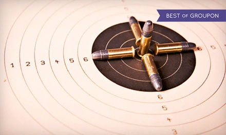 One-Hour Excellence in Shooting Class for One or Two provided by Guns-n-Gear LLC (Up to 68% Off)