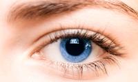 1x oder 2x Wimpern-Lifting bei Juwel Kosmetik (bis zu 66% sparen*)