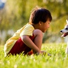Up to 65% Off Dog Waste Removal