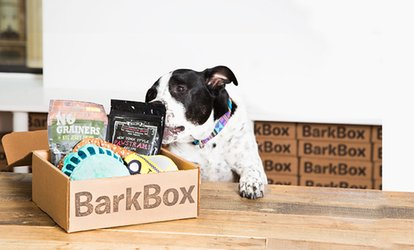 image for One- or Three-Month Dog Goodie Delivery Subscription with Extra Toy Club Membership from BarkBox (Up to 24% Off)