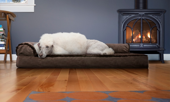 Remarkable Up To 80 Off On Chaise Style Orthopedic Pet Bed Groupon Goods Alphanode Cool Chair Designs And Ideas Alphanodeonline
