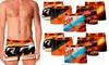 Pack de 10 boxers KTM en microfibre