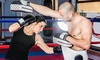 Wolverine Mixed Martial Arts Training Camp - Highland: Adult or Youth Classes at Wolverine Mixed Martial Arts Training Camp (Up to 88% Off). Three Options Available.
