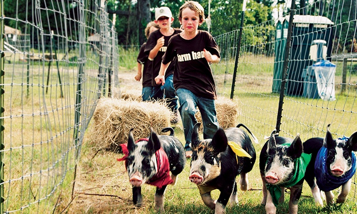 Hunter Cattle Farm - Nevils-Stilson: $9 for The Farm Heritage Day Festival for Two on September 20 at Hunter Cattle Farm ($18 Value)