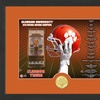 NCAA 2016 National Champions Clemson Tigers Single-Coin Photo Mint