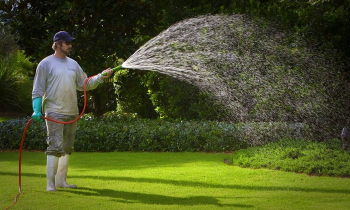 BioGreen - Orlando: Evaluation and Fertilization for Lawn Up to 5,000 or 10,000 Sq. Ft. from BioGreen (Up to 55% Off)