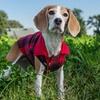 Eddie Bauer Flannel Shirt Vest for Dogs