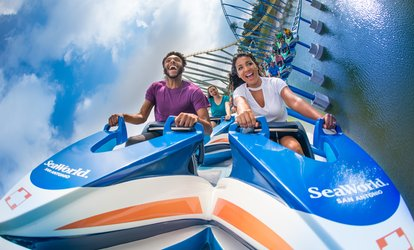 image for $67.99 for One SeaWorld and Aquatica San Antonio 5 Day Flex Ticket ($85.52 Value)