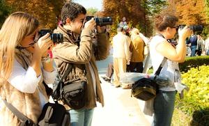 Curso intensivo de fotografía con prácticas en el Retiro por 24,90 €