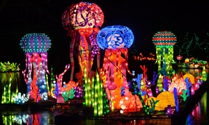Up to 33% Off Tickets to Chinese Lantern Festival  at Chinese Lantern Festival, plus 6.0% Cash Back from Ebates.