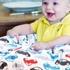 Itzy Ritzy Shopping-Cart and High-Chair Cover