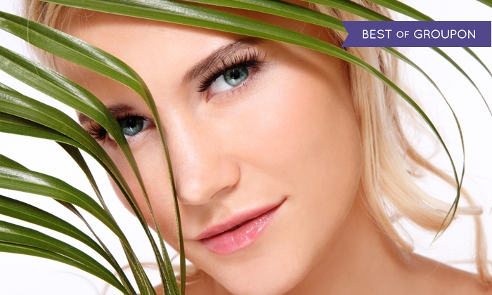 Absolute Skin & Body Care - Absolute Skin & Body Care: Three or Six Laser Skin-Rejuvenation or Acne Treatments at Absolute Skin & Body Care (Up to 84% Off)