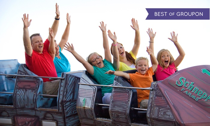 Seven Peaks - Lehi Fun Center: Package with Unlimited Attractions, Arcade Tokens, and Food for Two or Four at Seven Peaks Lehi (Up to 51% Off)