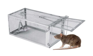 Cage piège attrape souris