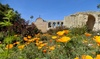 Mission San Juan Capistrano - Mission San Juan Capistrano: Visit for Two or Four Adults to Mission San Juan Capistrano (50% Off)