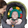 Eric Carle 2-in-1 Head Support Pillow