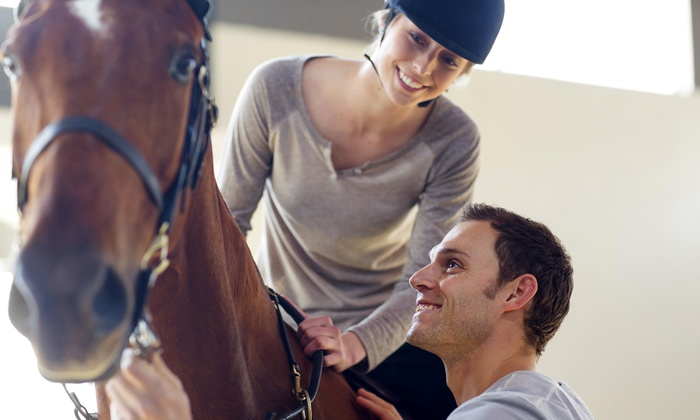 Choya Farms - Manorville: Learn English or Western Techniques During Horseback-Riding Lessons at Choya Farms