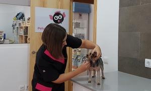 Distrito Animal: Sesión de peluquería con opción a pipeta anti parásitos para un perro de hasta 15 kg desde 14,90 € en Distrito Animal