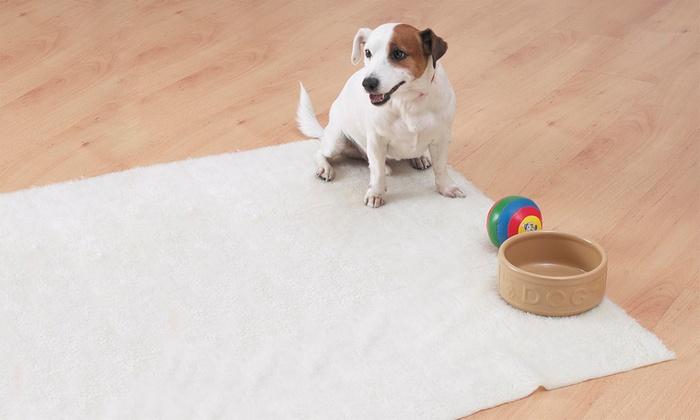 Groupon Goods Global GmbH: 1 o 2 mantas para mascotas Fleecy
