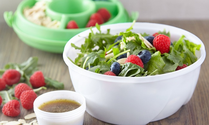 Chiller Bowl Portable Salad Kit