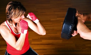 Colorado Karate Club: $63 for 10 Kickboxing Classes with Gloves at Colorado Karate Club ($179 Value)