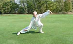 Have Qi Will Travel: One or Three Months of Tai Chi Classes at Have Qi Will Travel (Up to 53% Off)