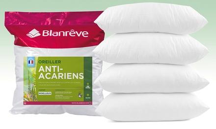Lot de 2, 4, 6, 8 ou 12 oreillers volume Blanrêve anti-acariens aux huiles essentielles  (SaintEtienne)