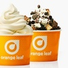 Orange Leaf Frozen Yogurt — 38% Off