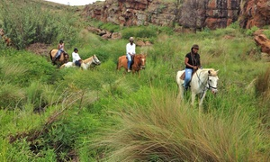 Adventure Horse Riding: Adventure Horse Riding: Outride with Rump Steak and Sides from R499 for Two with Optional Bubbly (Up to 55% Off)