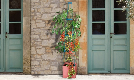 Self-Watering Plant-Growing Tower
