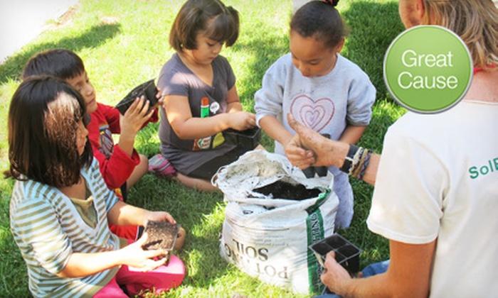 Corner Farm Chicago - Altgeld Sawyer Corner Farm: $10 Donations to Improve Community Garden