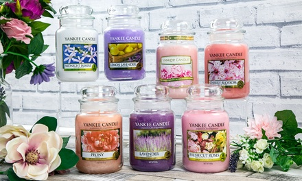 Fino a candele Yankee Candle da 623 g, disponibili in varie fragranze