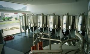 Cata ilimitada de cerveza con visita guiada a la planta y picoteo para 2, 4 o 6 personas desde 9,90 € en La Socarrada