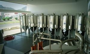 LA SOCARRADA: Cata ilimitada de cerveza con visita guiada a la planta y picoteo para 2, 4 o 6 personas desde 9,90 € en La Socarrada