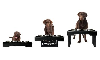 Barking Bistro 3-Stage Elevated Feeder for Dogs