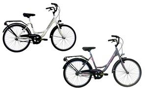 Vélo hollandais 24