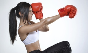 CKO Kickboxing: Three or Five Kickboxing Classes with Starter Gloves at CKO Kickboxing (76% Off)