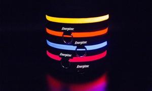 Energizer Ignite LED Dog Collar